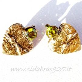 Žalvariniai auskarai ŽA241