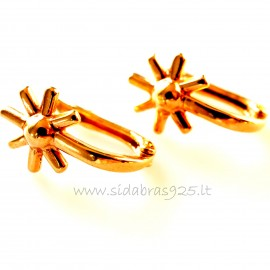 Bronze earrings BA208