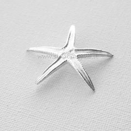 Серебряная звезда 999,9˚проба
