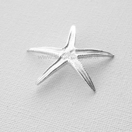 Серебряная звезда 999,9