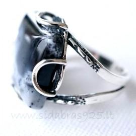 Sidabrinis žiedas su Agatu
