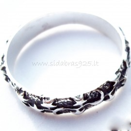 Ring with moons and stars Ž123
