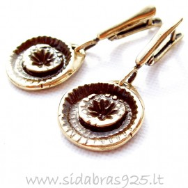 Brass earrings ŽA565