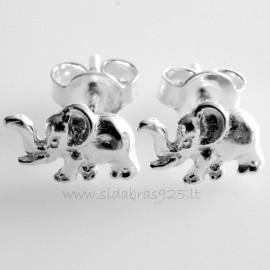"Earrings ""Elephant"" A729"