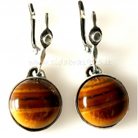 Earrings with the Tiger Stone