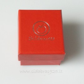 "Dovanų dėžutė ""Sidabras 925 R"""