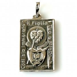 """Pakabukas religinis medalionas """"Dvi širdutės""""P753"""
