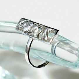 Ring on the little finger Ž040