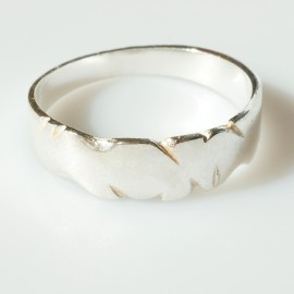 Wedding ring Ž004